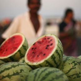 CNN.com: Best beach foods and snacks